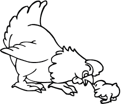 baby chickens coloring picture
