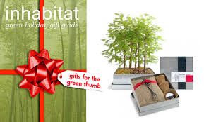 eco friendly holiday gifts for green thumbs inhabitat green