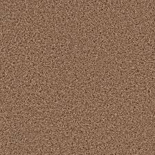 home decorators collection carpet sample kalamazoo ii color