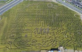 photos corn maze at thanksgiving point pays tribute to the