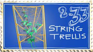 cheap whimsical string trellis for growing runner beans or