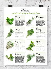 Herb Chart   quick reference herb chart dabbles babbles