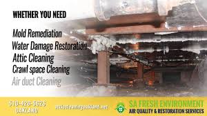 Crawl Space Cleaning San Francisco Sa Fresh Environment Attic Cleaning Oakland 510 426 5626 Youtube