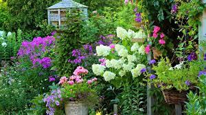 Flower Gardens Wallpapers - flower bee busy flower summer gardens wallpaper full screen hd 16