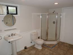 basement toilet basements ideas