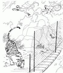 fresh zoo coloring pages 53 on coloring for kids with zoo coloring