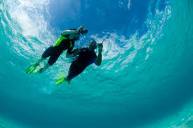 Georgia snorkeling images Georgia man dies while snorkeling off key largo nbc 6 south florida jpg