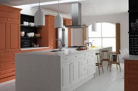 kitchen colour ideas 2014 http kitchensourcebook co uk wp content uploads 2014 01 spice