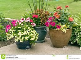 flower pot arrangement 94 unique decoration and outdoor flower