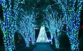 callaway gardens fantasy lights groupon callaway gardens fantasy lights discount coupons zo skin care coupons