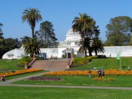 San Francisco Flower Garden by Horticulture U2013 A Photo A Day By Me