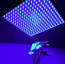 blue led light led lights gallery
