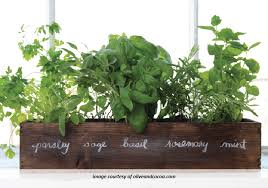 Window Sill Herb Garden Designs S Top Notch Advice Window Sill Herb Garden Coleman Homes