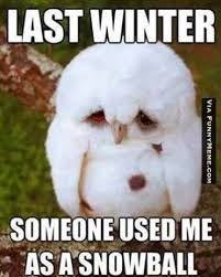 Funny Weather Memes - 21 very funny winter memes photos and graphics greetyhunt