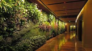 vertical gardens the ups and downs of vertical gardens the national