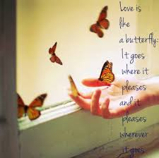 butterfly quotes about many wise words about