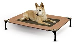 Dog Sofas For Large Dogs by 10 Best Pet Beds For Dogs And Cats To Check Out Pet Blog For Dog