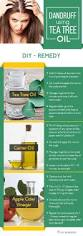 Tea Tree Oil Hair Loss Best 25 Tea Tree Oil Uses Ideas On Pinterest Tea Tree Tea Tree