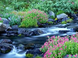 Image Of Spring Flowers by Desktop Wallpaper S U003e Nature U003e Paradise River Surrounded By Spring