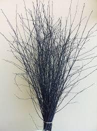 Decorative Birch Branches For Sale Amazon Kitchen & Home