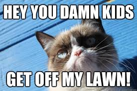 Get Off My Lawn Meme - hey you damn kids get off my lawn grumpy cat blue quickmeme