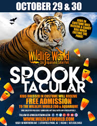 wildlife world zoo u0027s spooktacular wildlife world