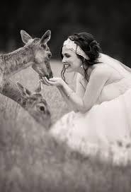 gum gully farm wedding venues silvan easy weddings