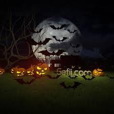 gefii diy halloween party 15pcs pack black pvc 3d decorative bats