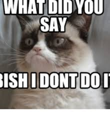 How Do You Say Memes - 25 best memes about what did you say to me bish what did you