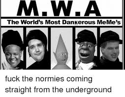 Fuck The World Memes - mw a the world s most dankerous meme s fuck the normies coming