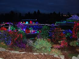 Zoo Lights Pt Defiance by The Brewster Family