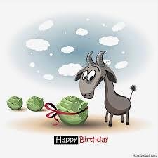 happy birthday mick backyard galah cam