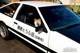 Doge Meme Car - initial d oge doge memes blake s pinterest doge and memes