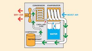 how dehumidifiers eliminate basement moisture baseline inspections