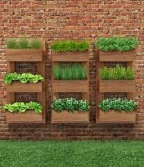 wooden pallet vertical herb garden 130 inspired wood pallet