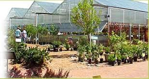 Sunnyside Gardens Idaho Falls - town and country gardens idaho falls u0026 pocatello id great