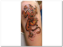 beautiful colored tiger