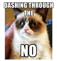 Tard The Grumpy Cat Meme - 17 best that mad cat again den sure kat igen images on