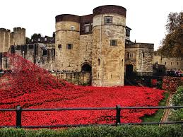 remembrance day and the poppies at the tower of london u2013 the well