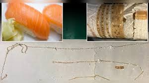 pat鑽e cuisine 食到生蟲 日日食三文魚刺身美壽司迷屙1 7米絛蟲 即時新聞 美國