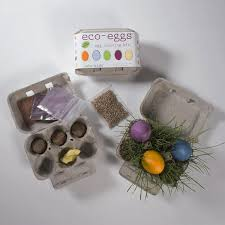 eco kids eco eggs natural easter egg dyes