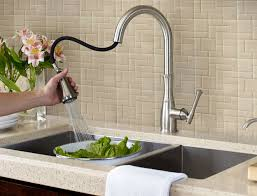 Best Pull Out Kitchen Faucet Explore Styles Traditional Kitchen Pfister Faucets