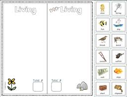phonics focus sort living u0026 non living objects each worksheet
