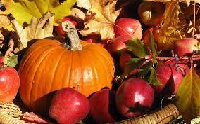 autumn pumpkin wallpaper widescreen fall harvest images reverse search