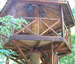 Simple Backyard Tree Houses by 20 Best Tree House Ideas Images On Pinterest Tree House Plans