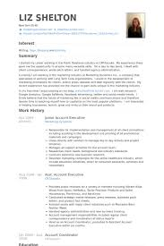 Sample Pitch For Resume by Junior Account Executive Resume Samples Visualcv Resume Samples
