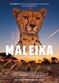 Kinoprogramm Bad Hersfeld Maleika Kinoprogramm Filmstarts De