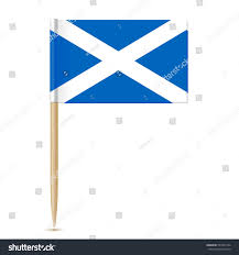 scotland flag toothpick isolated on white stock vector 567351334