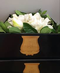 gardenia flower delivery highcsupply com gifts pinterest gardenias flower delivery