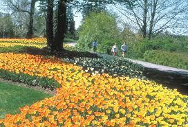 فصل الربيع Images?q=tbn:ANd9GcSv0NnH55QTQt4JB6iNT9eMhzsuYjPmDT9TcMhw9tDaYpZmsU77